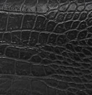 croco noir